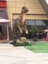 平顶山大型恐龙动态展览出租灯光展造型制作出售租赁图片
