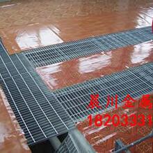 防水地漏,地漏格栅板,不锈钢格栅板,齐齐哈尔格栅板图片