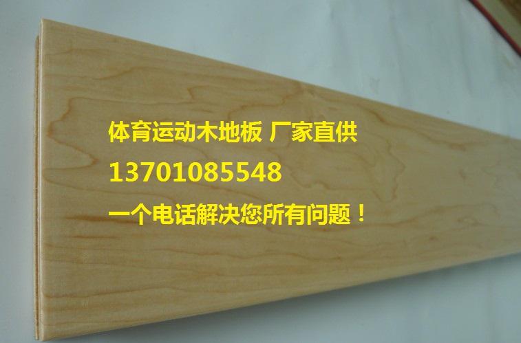 枫木运动地板图片