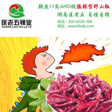 辣翻天来袭,干辣椒价格连涨六个月-匡老五辣业图片