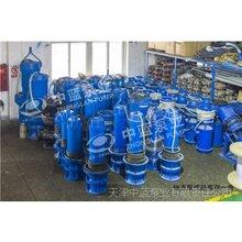 37KW潛水軸流泵廠家現貨圖片