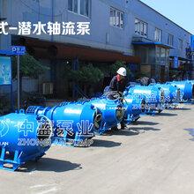 大流量雪橇式軸流泵圖片