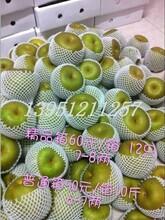 焦溪蜜梨免費吃啦圖片