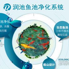 四川景观水质净化循环设备