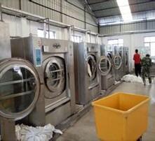 工业洗衣机,海狮水洗机图片
