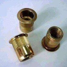 標準鉚螺母,非標鉚螺母,拉鉚螺母定制,定做鉚螺母
