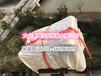 上海浦东新区吊床垫吊装搬运