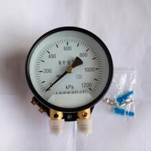 双针双管压力表机车压力表YCS-100带灯1200KPa图片