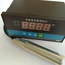 投入式液位變送器配數字顯示儀數顯投入式液位變送器圖片