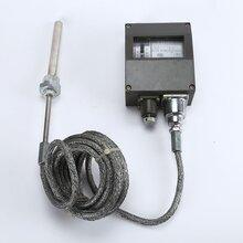 温州压力表温度控制器厂家WTZK-50压力式温度控制器图片