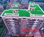 屋顶绿化设计方案