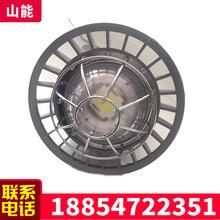 DGS30/127L(A)煤礦巷道燈井下用巷道燈隔爆型巷道燈包郵圖片