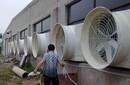 天津玻璃钢负压风机,防腐喇叭口排风机