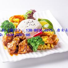 简餐快餐新品即将上市-肉末茄子-红烧肥肠,速食餐包批发