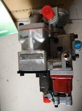 天津校油泵燃油泵3080584诚实守信可靠重油服务站点