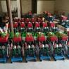 高山植树造林浇水设备,ZMB480型金蜂隔膜泵,山区输水泵,丘陵灌溉专业设备