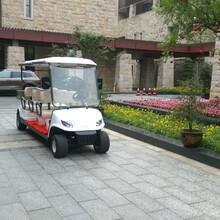 四川成都6座高尔夫球车观光车生产厂家销售