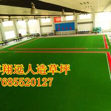 安阳老年人专用门球场人工草坪价格,高密度门球场草坪价格