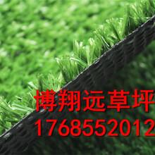 赤峰屋顶墙面用塑料仿真草坪单价价格