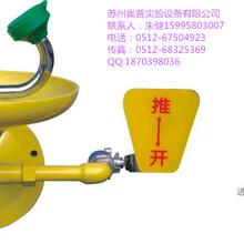 北京BTG11壁挂式洗眼器上海国标304不锈钢立式BTL11洗眼器天津市验厂洗眼器