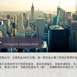 行唐项目申请报告-可信赖的项目申请报告的作用图片1