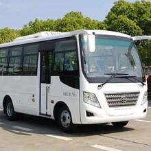 熱銷華新牌19座柴油版單位職工通勤客車(國六標準)圖片