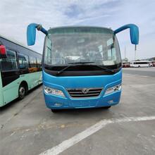 东风超龙29座单位员位通勤客车(国五标准)图片