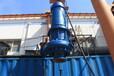 内蒙包头皮革厂专用的螺旋叶轮离心电泵-真正实现无堵塞的QLX螺旋离心泵