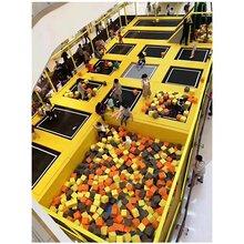 潍坊淘气堡厂家直销淘气堡免费设计上门安装图片