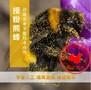 Biobest熊蜂授粉丨番茄授粉时间丨雄蜂丨北京嘉禾源硕图片