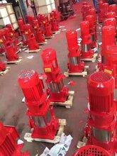 新標消防泵XBD5.0/20G-YBL
