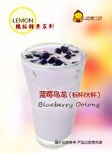 郑州麦克风奶茶连锁店