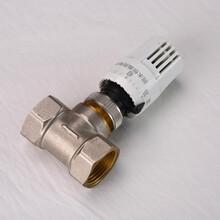 厂家热销温控阀门DN20电热温控阀电热执行器配合温控面板图片