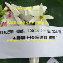 江蘇供應硅灰石超Xi粉800目硅粉1250目活性硅灰石粉硅灰石纖維圖片