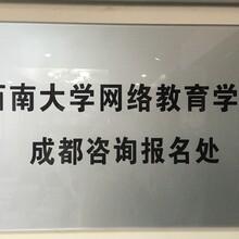 四川学历提升,学费低至2200/年,大机构体系完善!