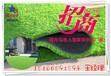 重庆市森悦人造草坪幼儿园、足球场、批发代理