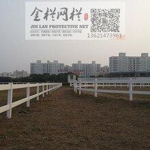 佛山广东PVC马场护栏,马场护栏,养马场护栏,欢迎咨询!图片