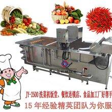 中央厨房专用洗菜机搜索蔬菜清洗机商用洗菜机大型食堂洗菜机图片