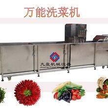 叶菜生产线加工洗菜机中央厨房生产线洗菜机清洗切割设备图片