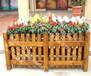 桂林城市街道定制户外实木防腐花箱公园展示花车