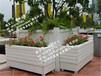 池州步行街定制花箱热卖促销花箱厂家直销值得信赖