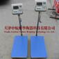 供应耀华便携式称重仪优质耀华电子秤