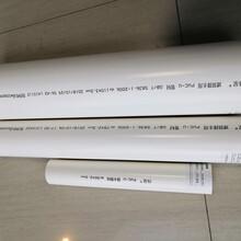 批發中財偉星PVC管材管件圖片