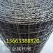 供应华卓钢丝不锈钢轧花网,316L高目数席型网