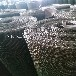 批量生产加厚不锈钢丝网304优质不锈钢筛网耐腐蚀