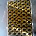 1毫米-6毫米编织轧花磷铜网25mm压花铜丝网