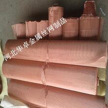工业化工专用99.97%纯铜编织网450目黄铜筛网