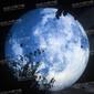 中秋节充气超级月亮气模月球气模灯商场景区美陈布景仿真月球星球气模图片