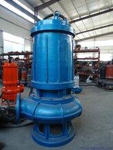 大流量潜水污水泵_WQ潜污泵_耦合式污水泵