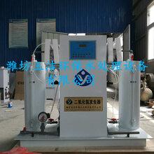 山东二氧化氯发生器生产商——潍坊玉洁环保
